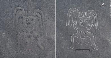 Jeroglíficos encontrados en arenas de Perú