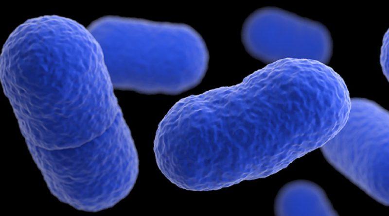 Qué es la Listeria y cuáles son sus síntomas