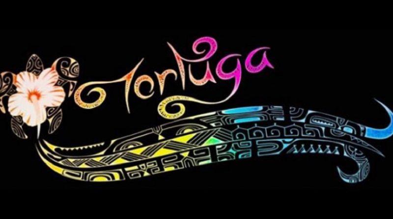 Tortuga Vestidos Tela Sofía